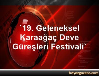 '19. Geleneksel Karaağaç Deve Güreşleri Festivali'