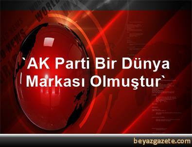 'AK Parti Bir Dünya Markası Olmuştur'