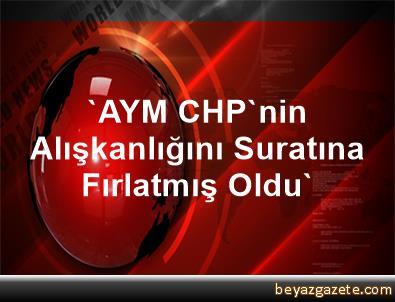 'AYM, CHP'nin Alışkanlığını Suratına Fırlatmış Oldu'