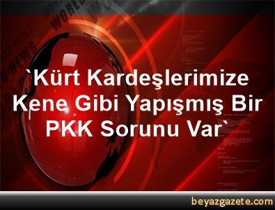 'Kürt Kardeşlerimize Kene Gibi Yapışmış Bir PKK Sorunu Var'