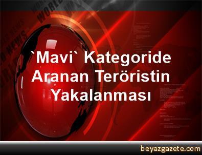 'Mavi' Kategoride Aranan Teröristin Yakalanması