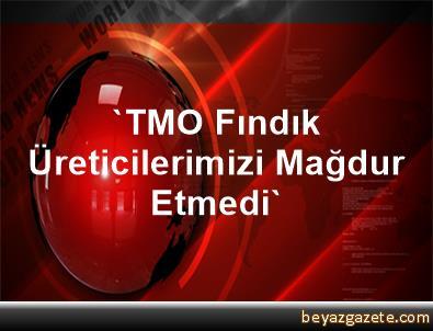 'TMO, Fındık Üreticilerimizi Mağdur Etmedi'