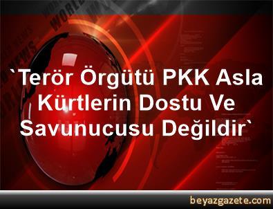 'Terör Örgütü PKK Asla Kürtlerin Dostu Ve Savunucusu Değildir'