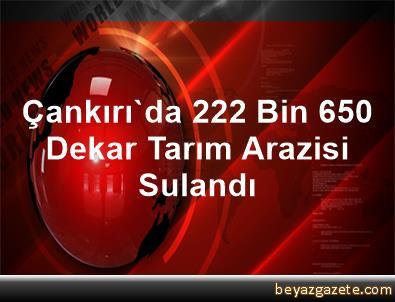 Çankırı'da 222 Bin 650 Dekar Tarım Arazisi Sulandı