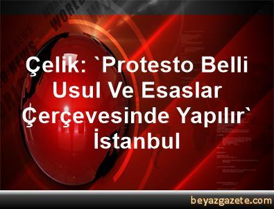 Çelik: 'Protesto Belli Usul Ve Esaslar Çerçevesinde Yapılır' İstanbul