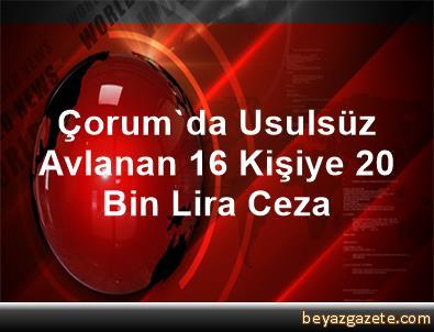 Çorum'da Usulsüz Avlanan 16 Kişiye 20 Bin Lira Ceza
