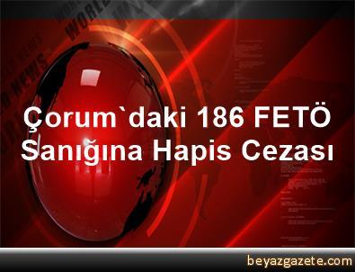 Çorum'daki 186 FETÖ Sanığına Hapis Cezası