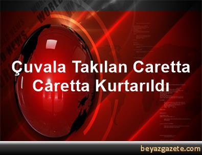 Çuvala Takılan Caretta Caretta Kurtarıldı