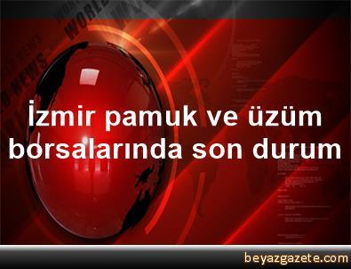 İzmir pamuk ve üzüm borsalarında son durum
