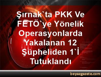 Şırnak'ta PKK Ve FETÖ'ye Yönelik Operasyonlarda Yakalanan 12 Şüpheliden 1'İ Tutuklandı