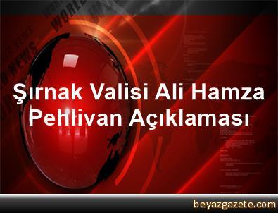 Şırnak Valisi Ali Hamza Pehlivan Açıklaması