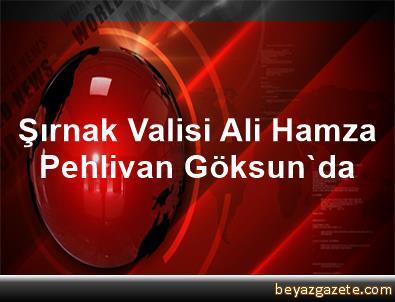 Şırnak Valisi Ali Hamza Pehlivan, Göksun'da