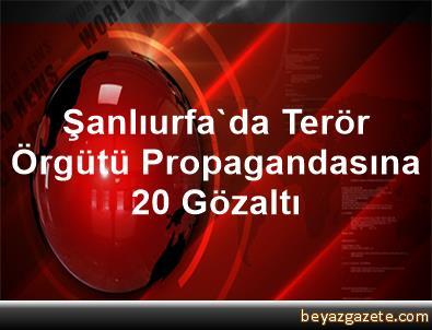 Şanlıurfa'da Terör Örgütü Propagandasına 20 Gözaltı