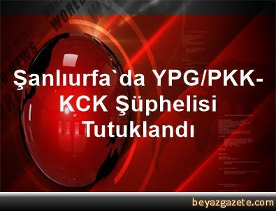 Şanlıurfa'da YPG/PKK-KCK Şüphelisi Tutuklandı
