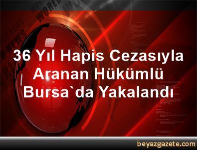 36 Yıl Hapis Cezasıyla Aranan Hükümlü Bursa'da Yakalandı