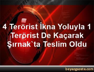 4 Terörist İkna Yoluyla, 1 Terörist De Kaçarak Şırnak'ta Teslim Oldu