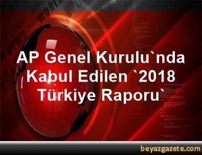 AP Genel Kurulu'nda Kabul Edilen '2018 Türkiye Raporu'