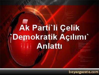 Ak Parti'li Çelik 'Demokratik Açılımı' Anlattı