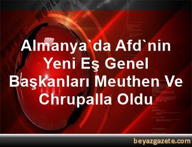 Almanya'da Afd'nin Yeni Eş Genel Başkanları Meuthen Ve Chrupalla Oldu