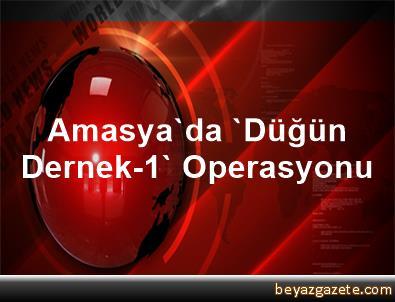 Amasya'da 'Düğün Dernek-1' Operasyonu