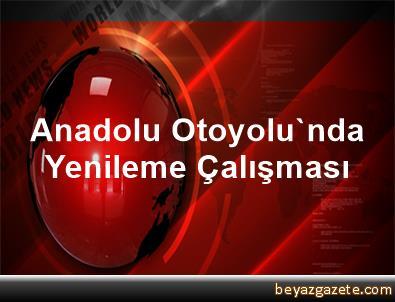 Anadolu Otoyolu'nda Yenileme Çalışması