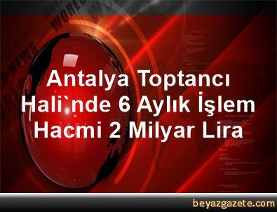 Antalya Toptancı Hali'nde 6 Aylık İşlem Hacmi 2 Milyar Lira