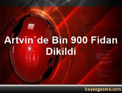 Artvin'de Bin 900 Fidan Dikildi