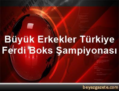 Büyük Erkekler Türkiye Ferdi Boks Şampiyonası