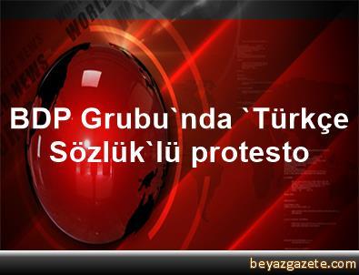 BDP Grubu'nda 'Türkçe Sözlük'lü protesto