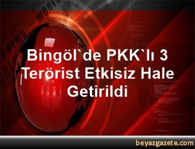 Bingöl'de PKK'lı 3 Terörist Etkisiz Hale Getirildi