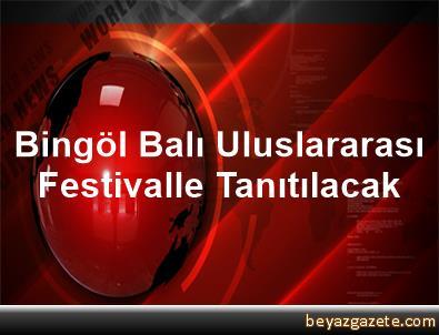 Bingöl Balı Uluslararası Festivalle Tanıtılacak