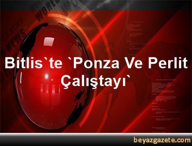 Bitlis'te 'Ponza Ve Perlit Çalıştayı'