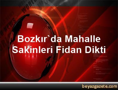 Bozkır'da Mahalle Sakinleri Fidan Dikti