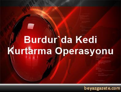 Burdur'da Kedi Kurtarma Operasyonu