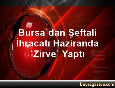 Bursa'dan Şeftali İhracatı Haziranda 'Zirve' Yaptı