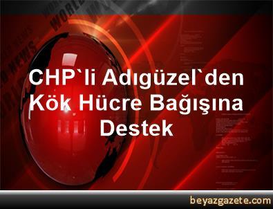 CHP'li Adıgüzel'den Kök Hücre Bağışına Destek