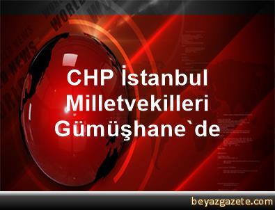 CHP İstanbul Milletvekilleri Gümüşhane'de