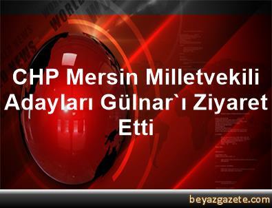 CHP Mersin Milletvekili Adayları Gülnar'ı Ziyaret Etti
