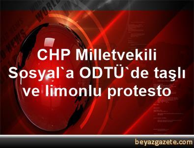 CHP Milletvekili Sosyal'a ODTÜ'de taşlı ve limonlu protesto