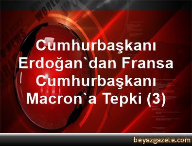 Cumhurbaşkanı Erdoğan'dan Fransa Cumhurbaşkanı Macron'a Tepki (3)