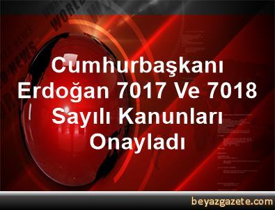 Cumhurbaşkanı Erdoğan, 7017 Ve 7018 Sayılı Kanunları Onayladı
