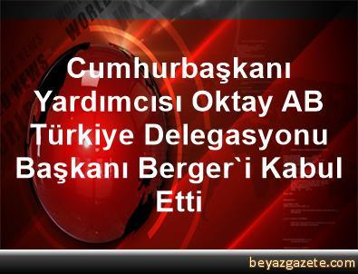 Cumhurbaşkanı Yardımcısı Oktay, AB Türkiye Delegasyonu Başkanı Berger'i Kabul Etti