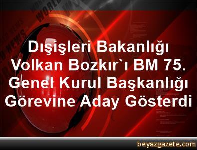 Dışişleri Bakanlığı, Volkan Bozkır'ı BM 75. Genel Kurul Başkanlığı Görevine Aday Gösterdi