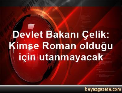Devlet Bakanı Çelik: Kimse Roman olduğu için utanmayacak