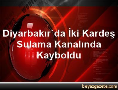 Diyarbakır'da İki Kardeş Sulama Kanalında Kayboldu