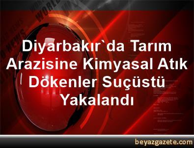 Diyarbakır'da Tarım Arazisine Kimyasal Atık Dökenler Suçüstü Yakalandı