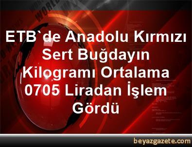 ETB'de Anadolu Kırmızı Sert Buğdayın Kilogramı Ortalama 0,705 Liradan İşlem Gördü