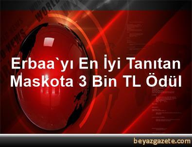 Erbaa'yı En İyi Tanıtan Maskota 3 Bin TL Ödül