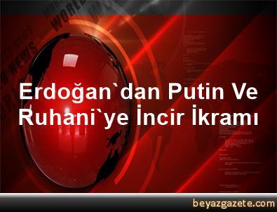 Erdoğan'dan Putin Ve Ruhani'ye İncir İkramı