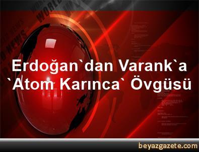 Erdoğan'dan Varank'a 'Atom Karınca' Övgüsü
